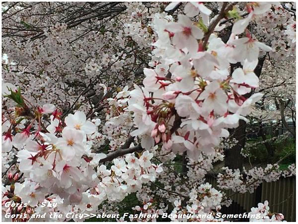 螢幕快照 2015-04-10 下午11.15.55.png
