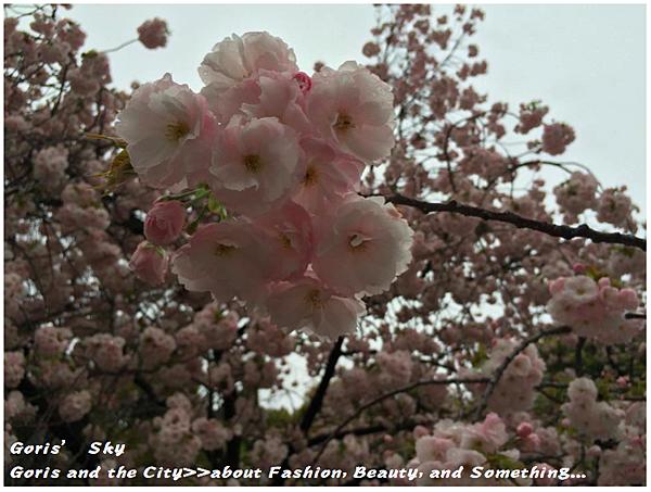 螢幕快照 2015-04-10 下午11.36.08.png