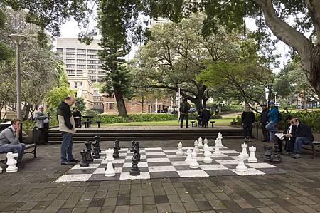 有大樹遮蔭,棋士們可以慢慢下大棋