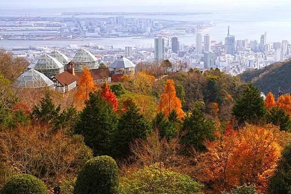 121208_Nunobiki_Herb_Garden_Kobe_Hyogo_pref_Japan01s3_copy.jpg