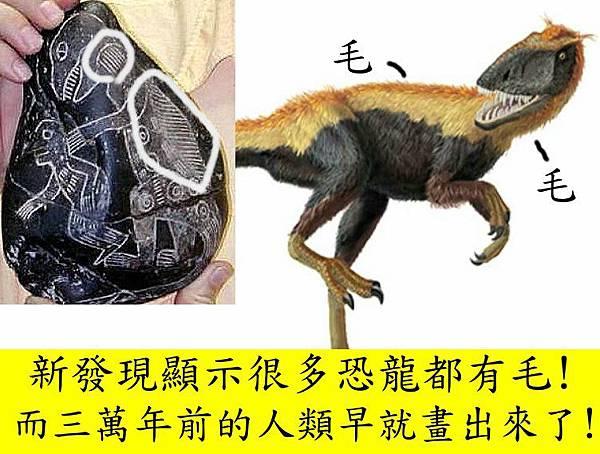 羽毛恐龍4.jpg