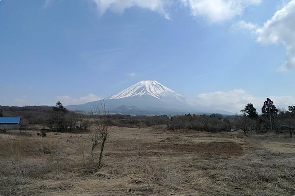 春天的富士山 (8)