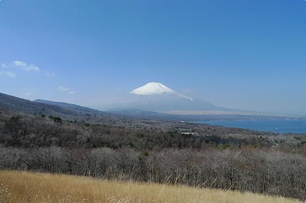 春天的富士山 (4)