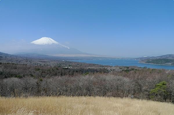 春天的富士山 (5)