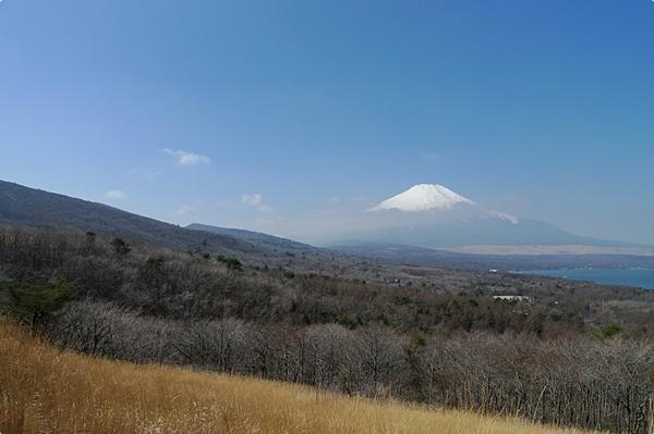春天的富士山 (6)