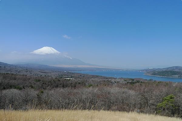 春天的富士山 (7)