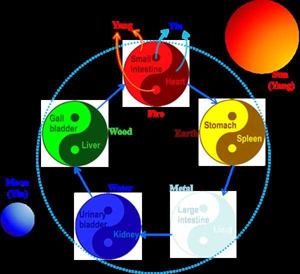 陰陽五行相互作用