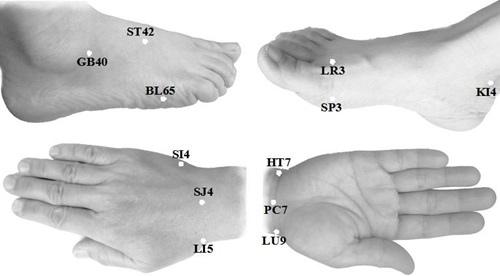 右手和腳上的12測量點