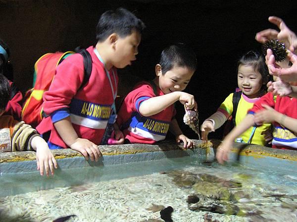 海洋生物館觸摸池