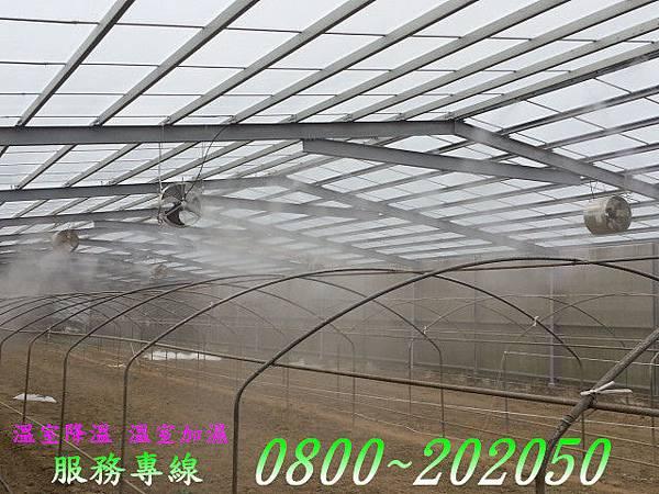 溫室植栽降溫