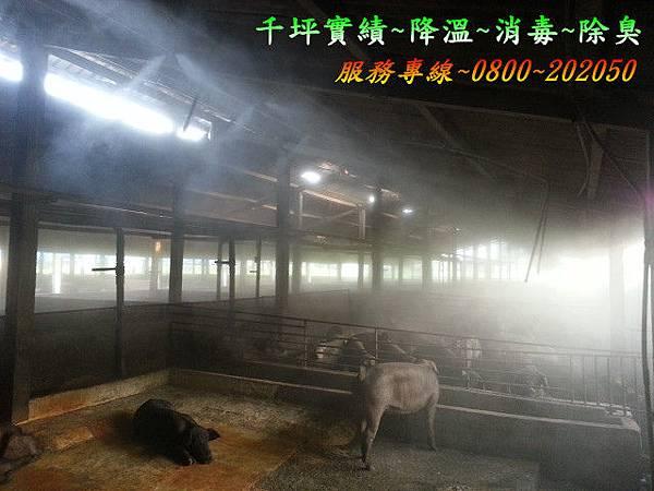 農場噴霧降溫消毒
