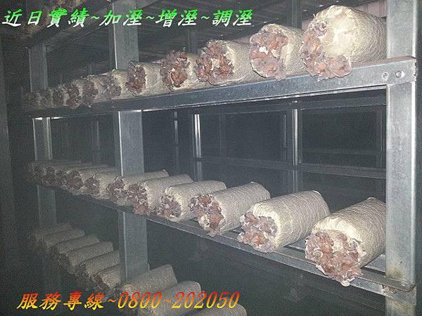 植物工廠木耳養殖場