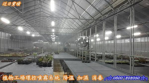 溫室噴霧降溫設備