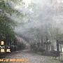 迷霧森林噴霧設備