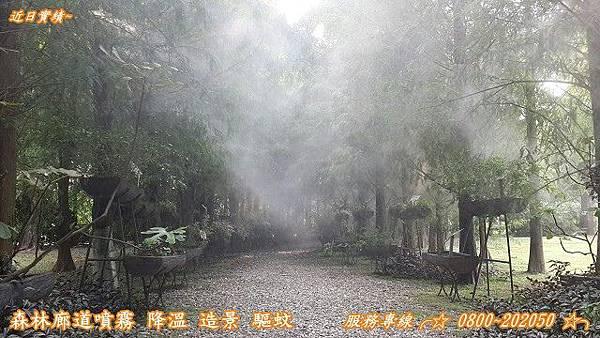 水霧森林噴霧設備