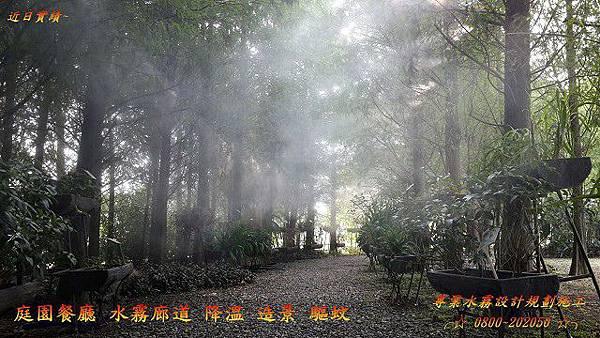 創造霧夢幻森林