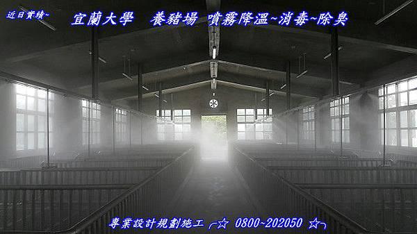 宜蘭大學噴霧消毒設備、養豬場消毒、豬舍降溫、殺菌噴霧