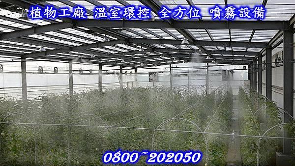 植物工場噴霧設備