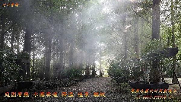 園藝樹牆水霧景觀