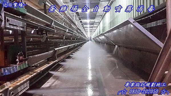 畜牧場養殖場牛羊雞豬消毒除臭、雞舍除臭、 全方位噴霧除臭消毒系統設備、台北、台中、高雄