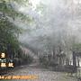 霧森林噴霧降溫設備