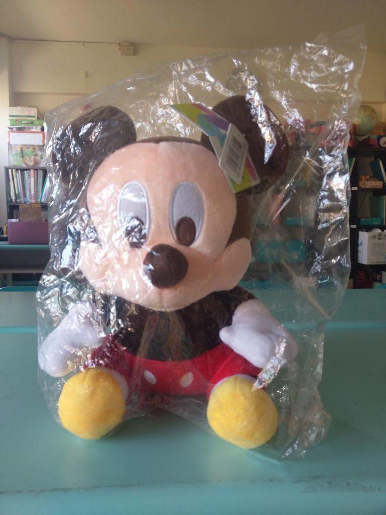 2.2彰化陳同學捐贈米奇娃娃一隻.jpg