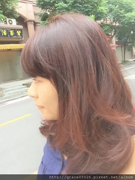 染髮_3159.jpg