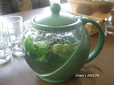 洋甘菊香草茶