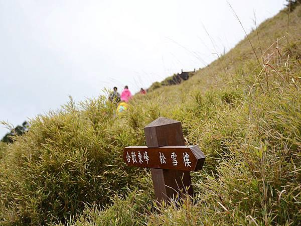 合歡山東峰 (1).JPG