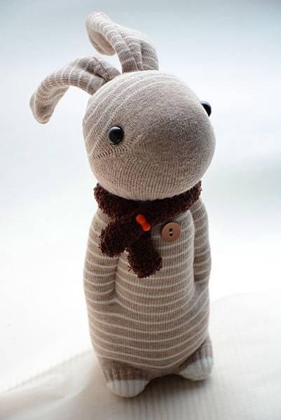 卡其橫紋兔 (3)