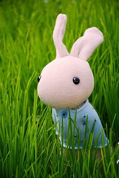 襪子娃娃181號清新暖男兔 (3)