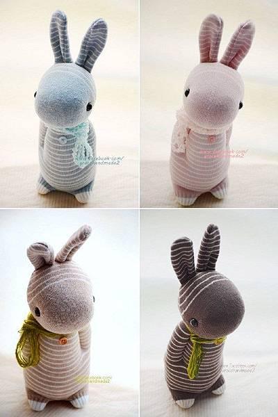 條紋多米4兔