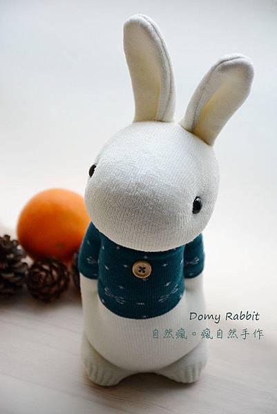 襪子娃娃520號藍綠T多米兔 (1)