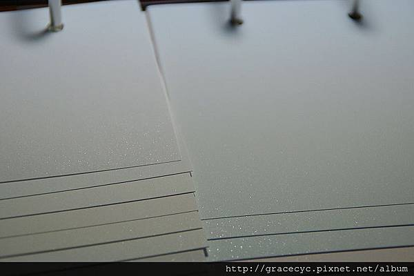 04晶鑽淺-DSC00106.jpg