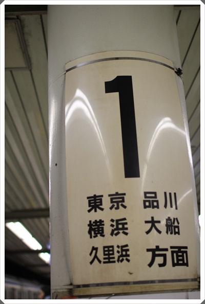 2015冬遊日本。東京迪士尼樂園之安娜與艾莎的冰雪夢幻 (5).JPG