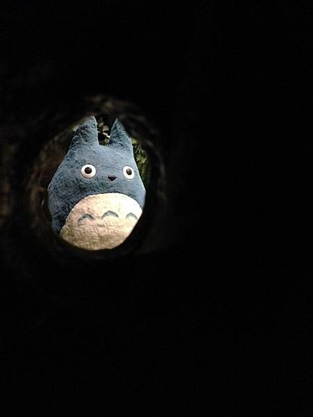 5)龍貓-grace媽媽-吉卜力的動畫世界特展 (4).jpeg