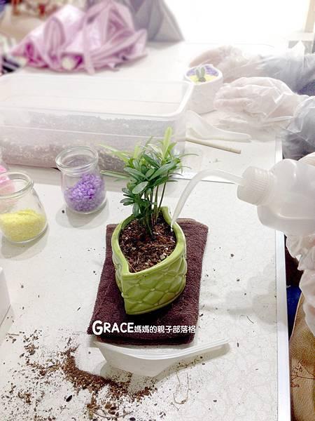 台南景點-安平老街-風之谷盆栽-親子DIY-免費打彈珠-新野家-grace媽媽 (39).jpeg
