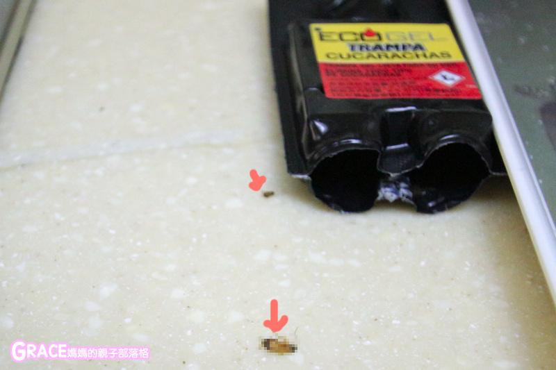 育兒好物-中山女中蟑螂老師蔡任圃-易克捷蟑螂藥-易克捷除蟑盒連鎖殺蟑-如何消滅蟑螂-自製蟑螂藥-除蟑推薦-有效蟑螂藥推薦-ECOGEL易克捷螞蟻藥如何殺螞蟻-除蟻藥-有效的螞蟻藥推薦-一點絕哪裡買-滅蟻-硼酸-害蟲防治-除蟻推薦-美食fb粉絲專頁-台灣美食blogger-人氣blog排行榜-育兒blog推薦-人氣媽媽blogger-親子網紅團購-痞客邦親子粉絲團-台灣旅遊美食親子部落客grace媽媽的親子部落格