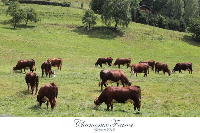Chamonix006