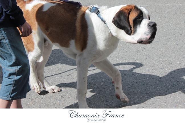 Chamonix037