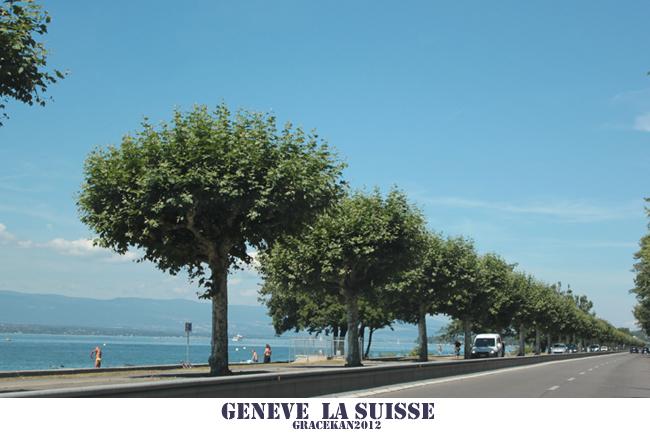 suisse016