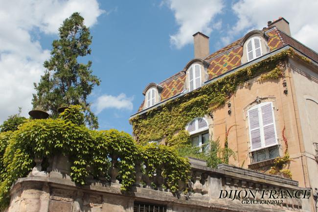 Dijon007