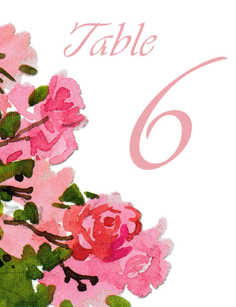 Table006