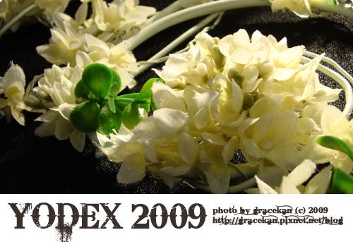 yodex2009003.jpg