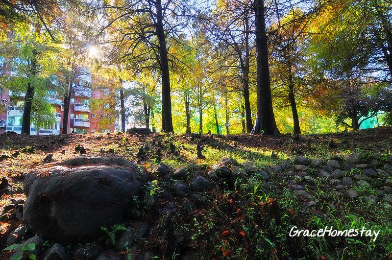 宜蘭羅東運動公園~12.12.14.,我是宜蘭民宿葛瑞絲