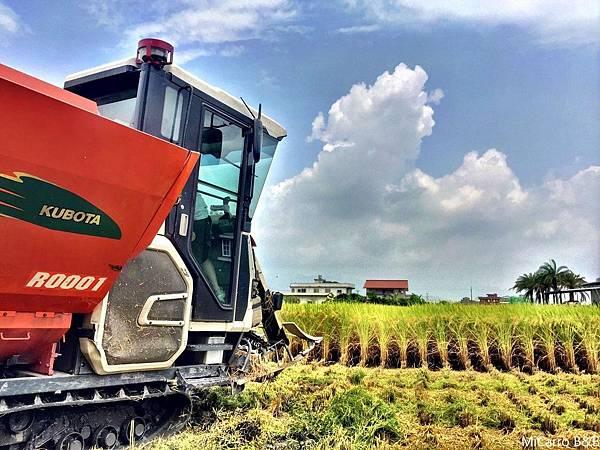 1宜蘭在地農產品 柯林農業有機安農米 等