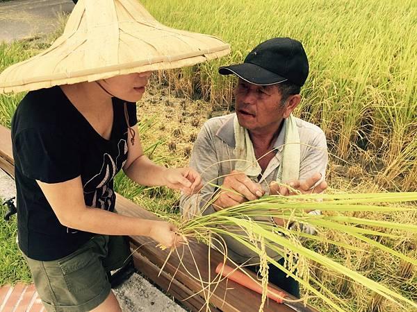 宜蘭在地農產品 柯林農業有機安農米 等