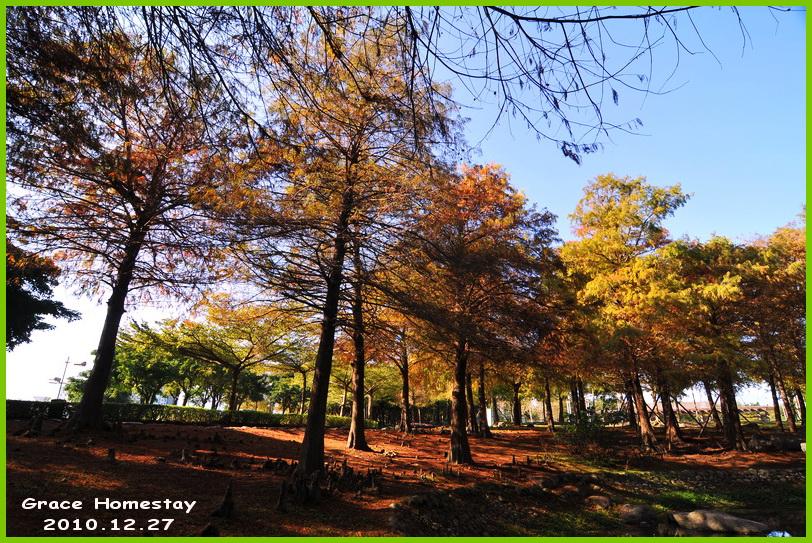 羅東運動公園~2010.12.27