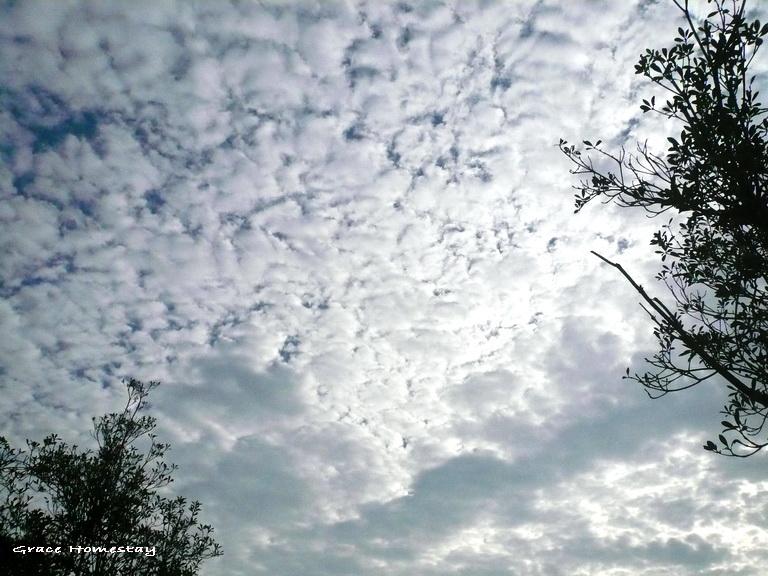 羅東天上怪怪的雲