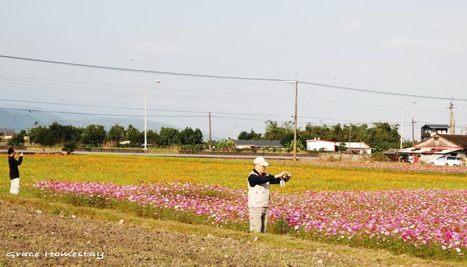 2010三星花田~我是宜蘭民宿小管家葛瑞絲